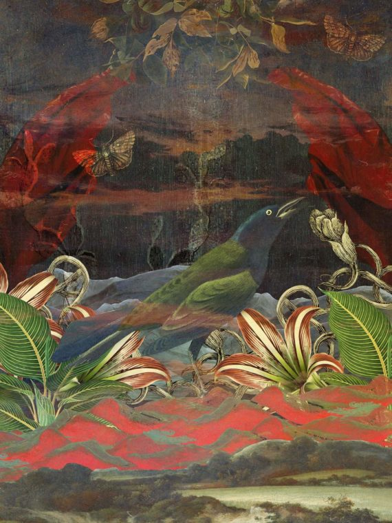 mempix art awaken marcel lisboa